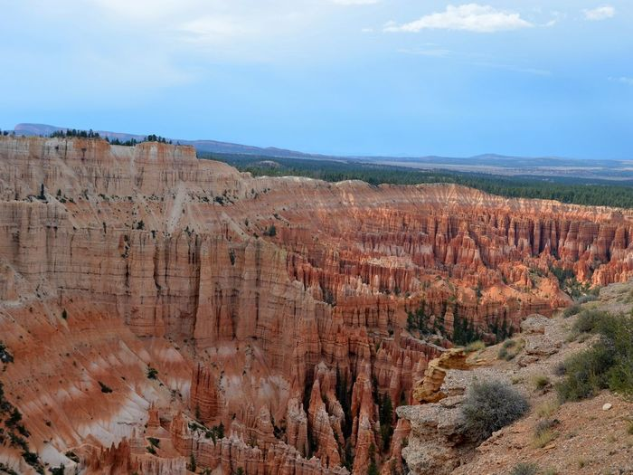 Bryce Canyon Light Mothernature Utah Bryce Canyon National Park Rock Formation Scenics Rock - Object Tree Arid Climate Travel Destinations Nature Rock Hoodoo Outdoors Landscape No People Beauty In Nature Day Sky
