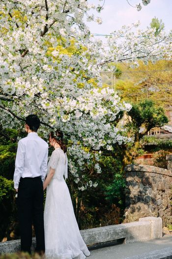 Newly weds Newlyweds Wedding Photography Kyoto Sakura Happiness Young Couple This Is Family