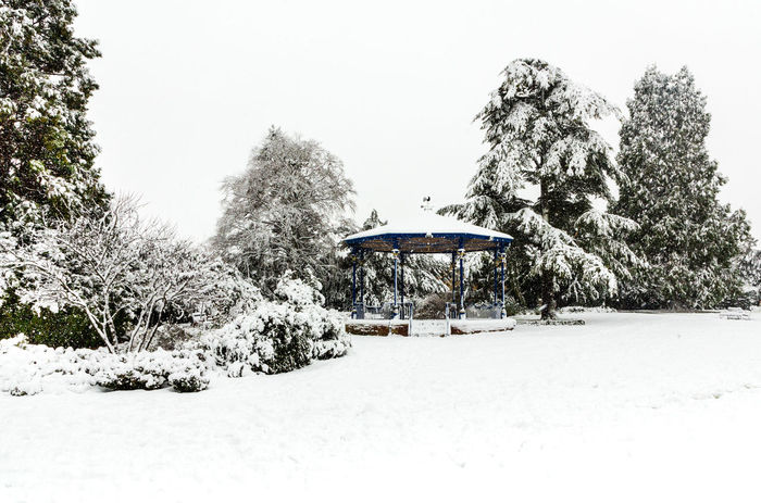 Snow around the band stand in Garth Park, Bicester. Garth Park Snow ❄ Band Stand Beauty In Nature Bicester Clear Sky Cold Temperature Day Landscape Nature No People Outdoors Park Park - Man Made Space Sky Snow Snowing Snowy Tree Winter