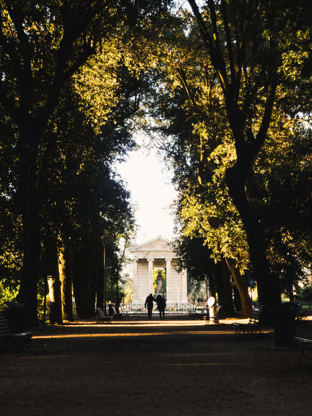 Tempio di Esculapio, Villa Borghese. Tree Silhouette Nature Outdoors Men Beauty In Nature People Tunnel Vision Light And Shadow Temple Rome Tranquil Scene Real People Tourism Togetherness Cuople Love