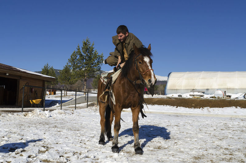 Man sitting on horse in ranch against clear sky