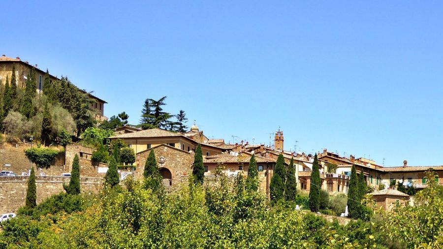 Italy🇮🇹 Montepulciano Toscana Italy Montepulciano D' Abruzzo Architecture Built Structure Building Exterior House Clear Sky Copy Space Tree Day No People Outdoors Plant Green Color Growth Blue Nature Grass Sky City's Of The World Brick Wall Brick Building Everyday Lives Way To Live