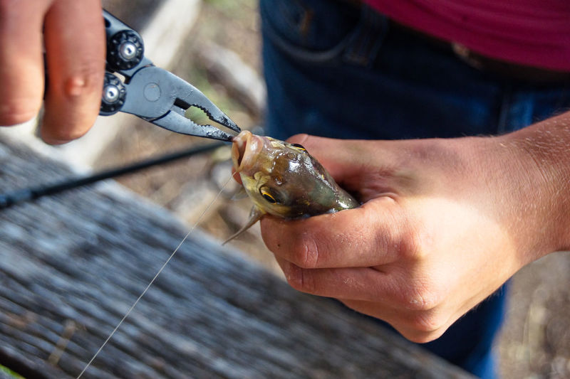 Midsection Of Man Using Pliers On Fish Outdoors