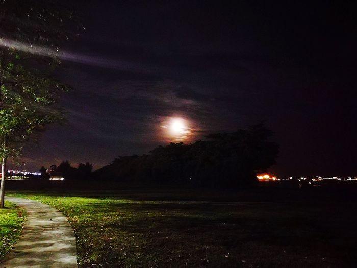 Illuminated field against sky at night