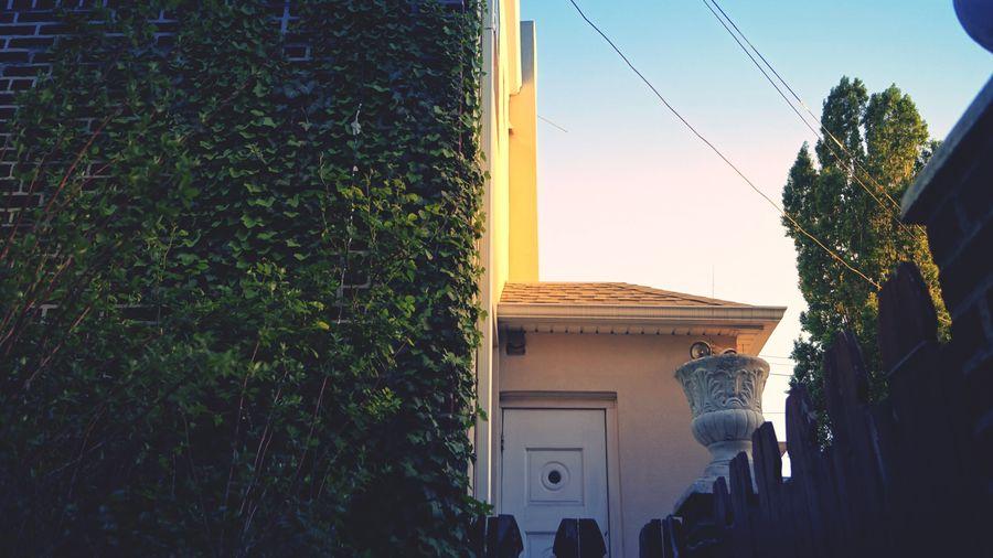 Taking Photos Early Morning Sunlight Morning Sunshine Brooklyn