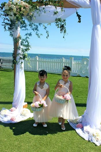 Flowergirls Blush Pink Lillypadflowers Real Flowers