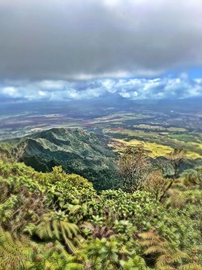 Hiking Hikingadventures Mountains Kaala Hawaii Oahu Nature Beauty In Nature Scenics Outdoors Landscape No People Tranquility Cloud - Sky Views From The Top Peaks Lucky Luckywelivehawaii First Eyeem Photo FirstEyeEmPic