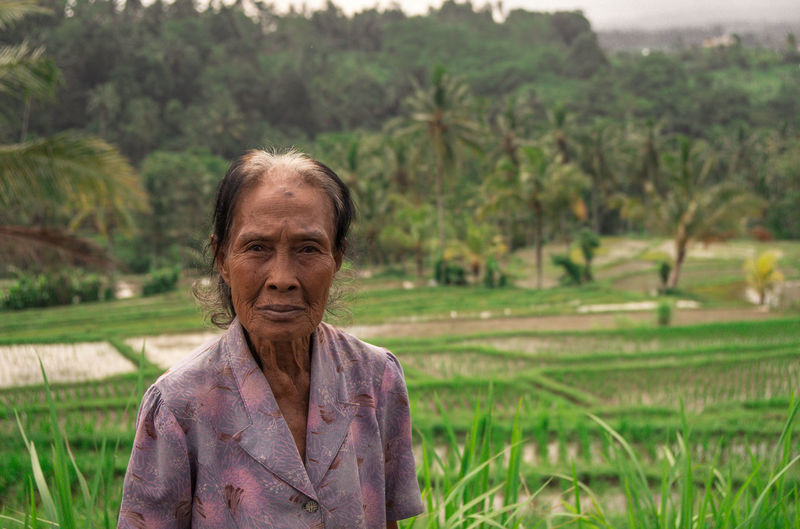 Adult Balinese Balinese Woman Day Farmer Field Focus On Foreground Front View Green Color Hairstyle Land Landscape Lifestyles Looking At Camera Nature One Person Outdoors Plant Portrait Real People Rice Field Senior Adult Tree Women