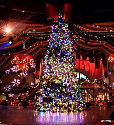 Tis the season Christmas Fun Christmas Decorations Christmas Lights Williamsburg Christmas Time Twelve Days Of Christmas On Eye Em My Winter Favorites