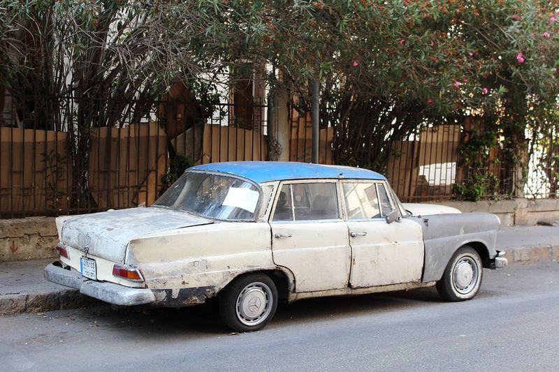 Vintage car on tree