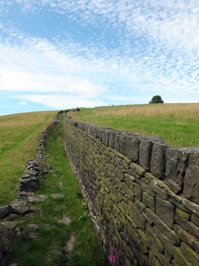 old lane and stone wall in yorkshire pennine landscape Ancient Ancient Civilization Architecture Beauty In Nature Cloud - Sky Day Field Grass History Landscape Lane Nature No People Old Ruin Outdoors Scenics Sky Stone Wall Tranquil Scene Tranquility