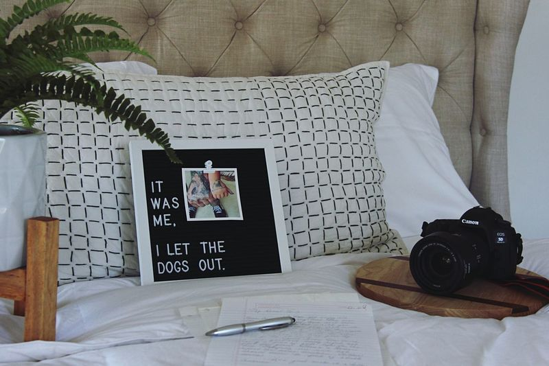Home Bedroom Home Message Board Ferns Quotes Lifestyle Canon Camera - Photographic Equipment