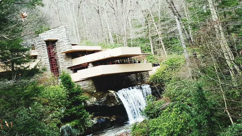 Taking Photos Hello World Fallingwater Connellsville Enjoying Life Nature Architecture & Nature Amazing Architecture Achitecture Franklloydwright PhonePhotography Samsung Galaxy S6 Nature Photography
