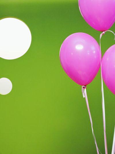 Gift Birthday EyeEmBestPics EyeEm Best Shots