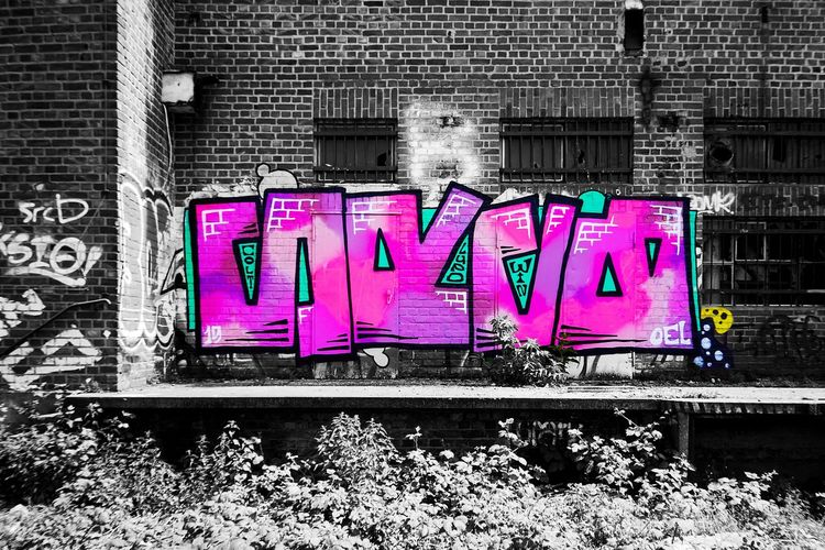 Abandoned Places Factory No People Text Communication Pink Color Architecture Western Script Built Structure Sign Graffiti Building Exterior Purple Capital Letter Wall - Building Feature Creativity Day Outdoors City Multi Colored Side By Side