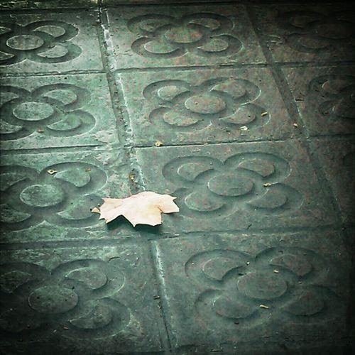 Simplicity Streetphotography