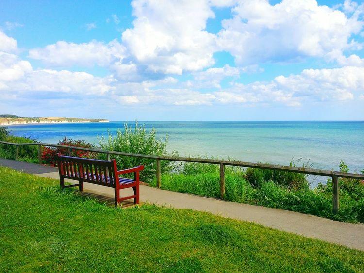 Love It Beatiful Nature Calm Beautiful Seaside_collection Sea Green Breathtaking View Water Grass Bench Amazing View Calming Sunshine Calm View Summer