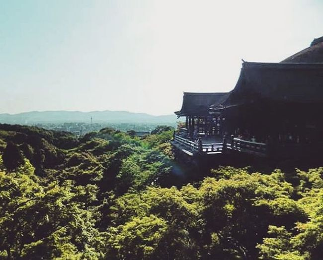 Kiyomizu-dera (pure water temple) I used a picture of this temple as a background on my PC for several months before I went to Japan. I had no idea that I would later end up visiting the temple during my study abroad in 2013. Kiyomizu Kiyomizudera KiyomizuTemple Temple Fiustudyabroad Japan Kyoto Kyotoshi Kyotojapan Travel Japanese  Japaneseculture Worldplaces Placestogo