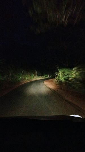 Nightphotography No People Transportation Road Night Transportation Illuminated Vehicle Forest Road Latenightdrives Mode Of Transport Vehicle Interior Wind Shield The Drive. Drivers Seat Drivebyphoto
