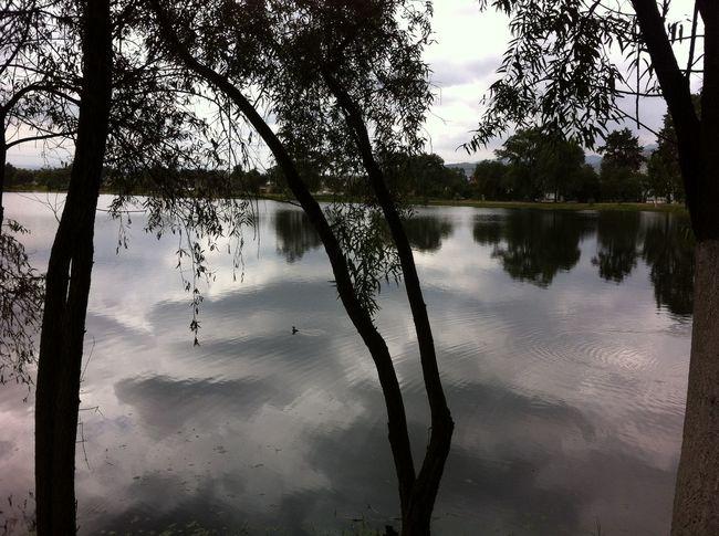 Paseando... NEM Landscapes Flippa K Asks: What Inspires You? EyeEm Nature Lover Reflection