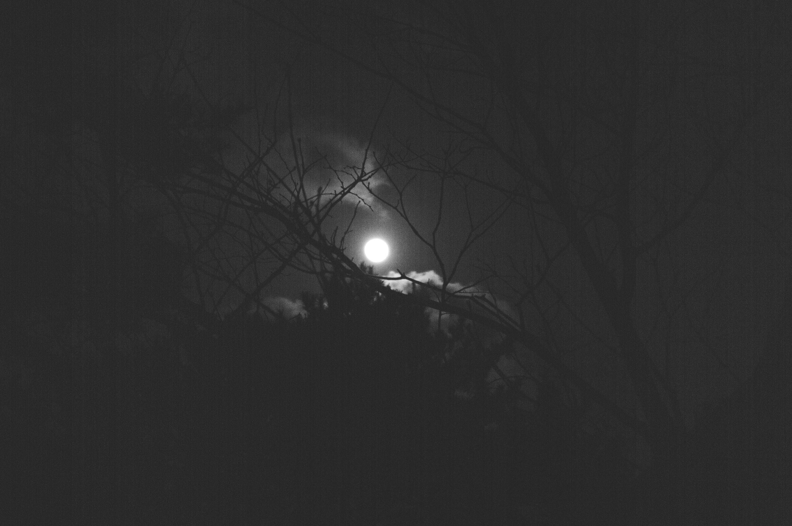 night, illuminated, lighting equipment, low angle view, dark, street light, silhouette, copy space, light - natural phenomenon, sky, electricity, glowing, outdoors, moon, nature, weather, electric light, no people, tranquility, tree