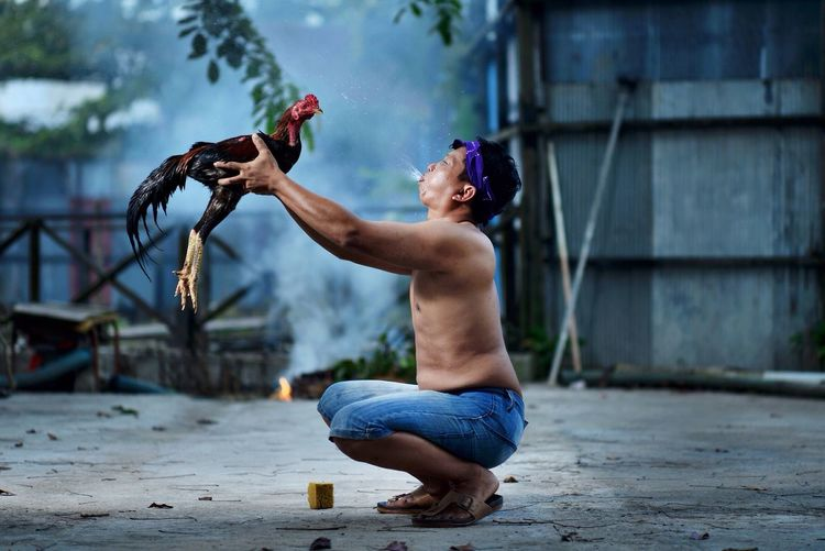Full Length Of Shirtless Man Holding Rooster