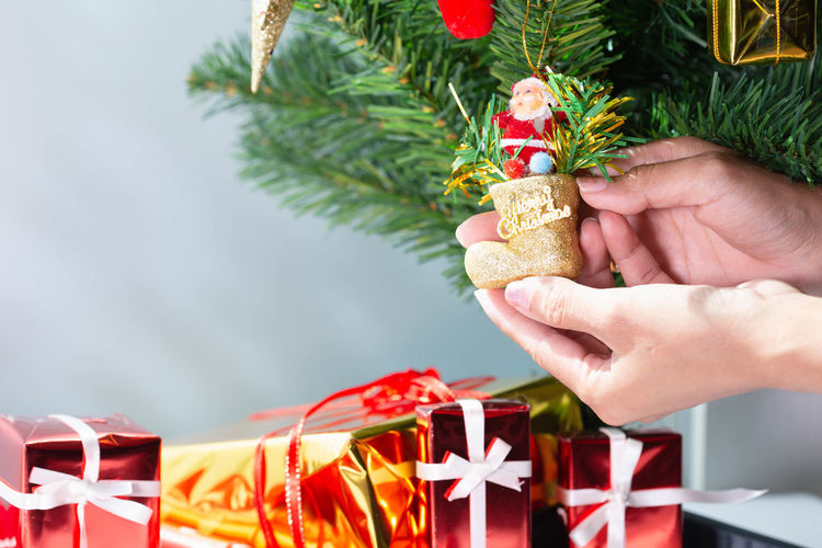 Midsection of person holding christmas tree