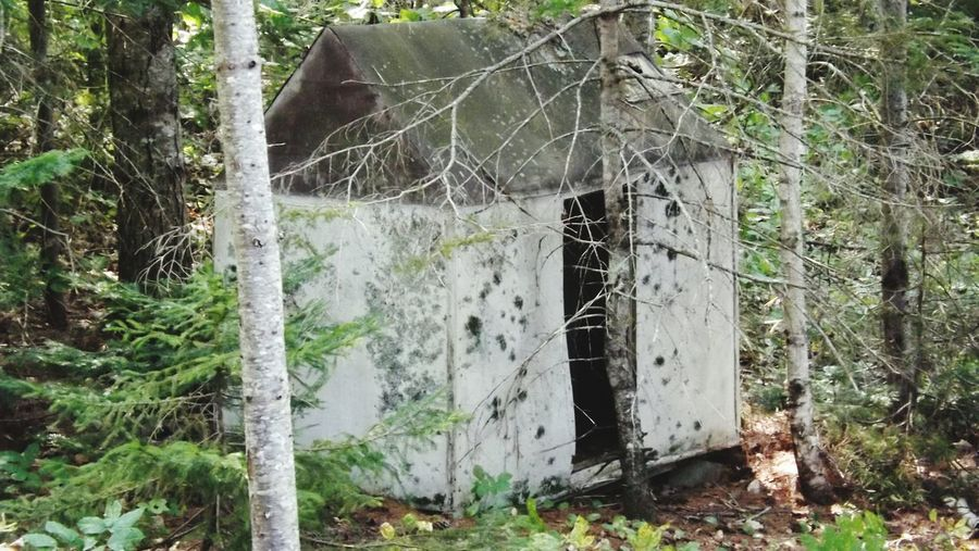 Old Building  Icehouse Mainelife Old Buildings Hidden Places Hidden Inthewoods Maine Fallingapart Mainephotography