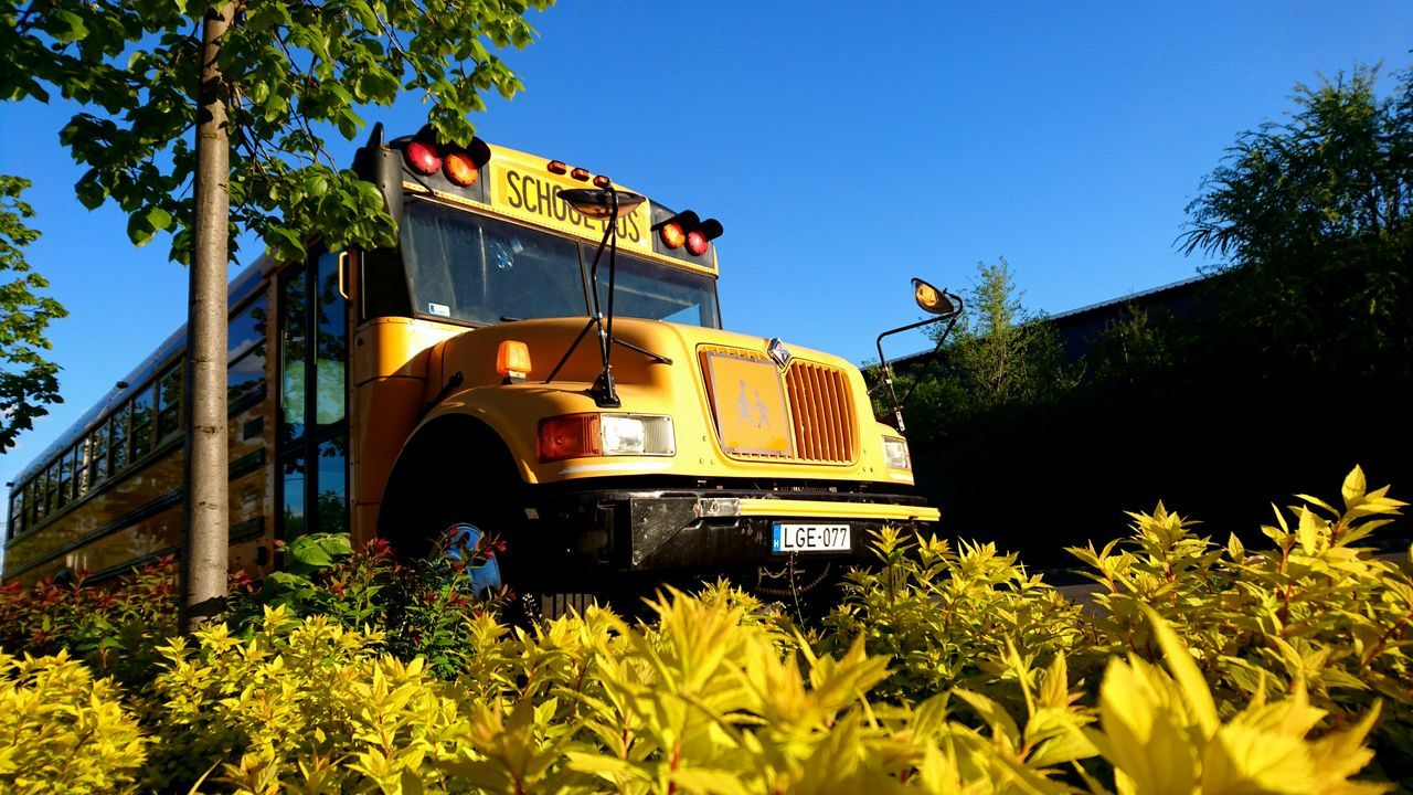 transportation, yellow, land vehicle, mode of transport, tree, outdoors, day, growth, field, plant, clear sky, nature, no people, sky