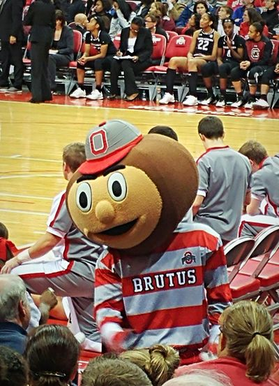 People Large Group Of People Crowd Brutus Buckeyes Buckeye Nation Buckeye Buckeye Game:) Mascot Character Ohio, USA Ohio People Watching Faces Of EyeEm Face Of EyeEm People Photography People Around You Real People People Of EyeEm People Together Arena Peoplephotography Popular Photos Popular Photo EyeEm Gallery