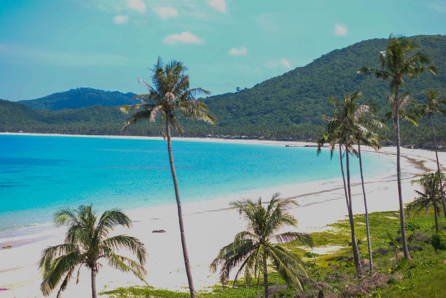 Palawan Philippines Palawanbeach  Tropical Climate Beauty In Nature Beach Outdoors Philippines Elnidopalawan Outdoor Photography Outingfun ElNidoIslands Elnido Nature