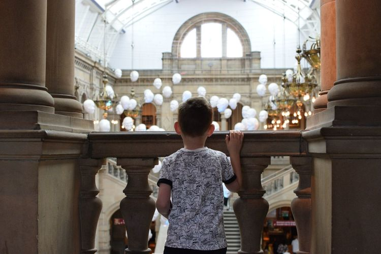 KelvingroveArtGalleries Kelvingrove Kelvingrove Museum Glasgow  Scotland Museum Boy Child Kid Standing Tee Shirt Lights Indoors  Child Childhood Standing Rear View Architecture Historic Cathedral Historic Building Art Museum Exhibition Visiting Field Trip Destinations Arch Interior