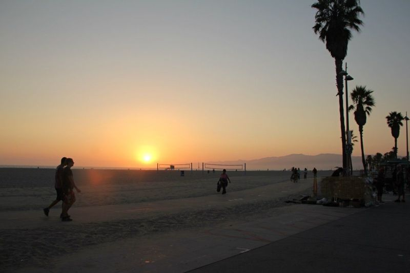 Beach Sea Ocean Palm Tree Sunset Horizon Over Water Silhouette Outdoors Full Length Tree Nature Sky People Adult Adults Only Day Water Nature California Beauty In Nature Lifestyles Leisure Activity Casual Clothing Clear Sky Haven