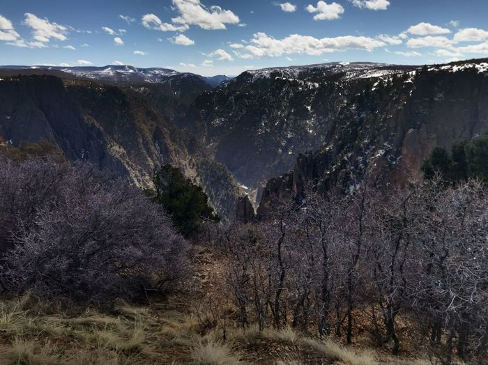 EyeEmNewHere Snow Winter Black Canyon Of The Gunnison Canyon Sky Scenics - Nature Nature Beauty In Nature No People Environment Mountain Landscape Land