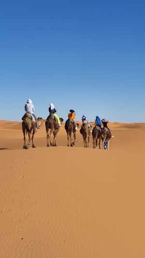 Panoramic view in sahara of morocco