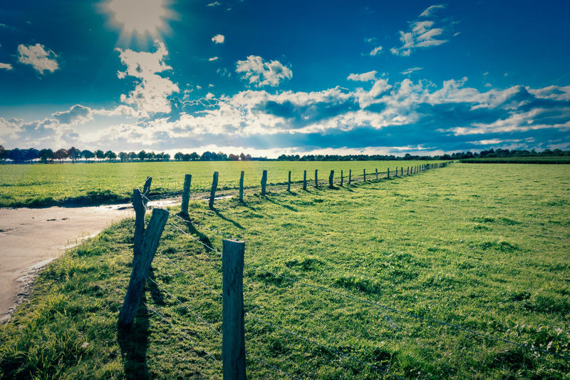 Rural Landscape with green grass and deep blue sky with white clouds Post Sky Landscape Environment Cloud - Sky Field Tranquil Scene Plant Land Tranquility Beauty In Nature Scenics - Nature Grass Nature Agriculture Green Color No People Fence Day Boundary Barrier Outdoors Wooden Post