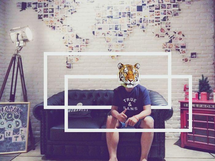 Tiger Rschfave True N Sans First Eyeem Photo