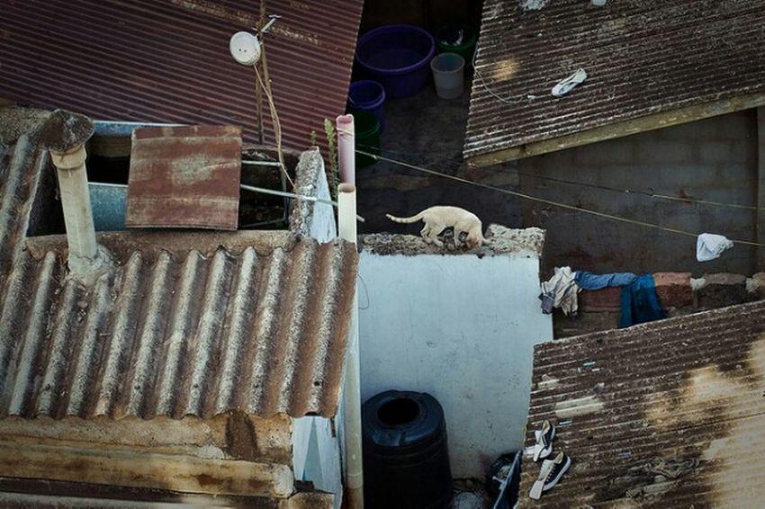 A Bird's Eye View Kibera Kenya