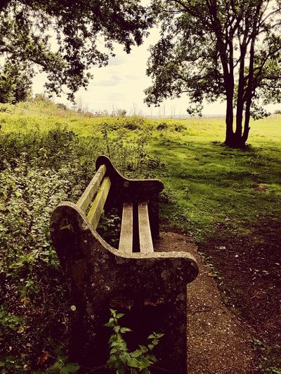Benches &