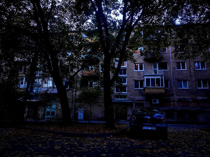 Sovetarchitecture HomeAlone Vwpolo Autumn Fall Leaves Wearegettingold Tree Architecture Built Structure Building Exterior No People Outdoors Day City Nature Sky