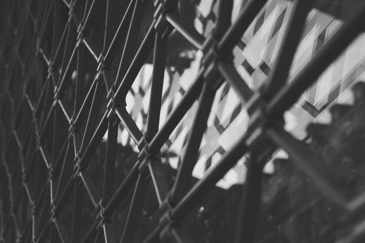 Fence Showcase