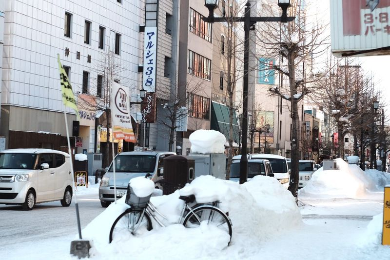 烏、もう一つの顔で笑う。 Winter Snow Cold Temperature City Street Tree Outdoors Day Fujifilm Eyem Gallery Eye4photography  Photography Cold Beauty In Nature Cloud - Sky Oldlens Streetphotography