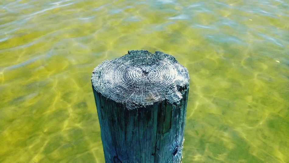 Water No People Day Nature Close-up Outdoors Waterfront Water Surface Beauty In Nature Tranquil Scene Scenics Dockside River View Wood - Material Beauty In Nature EyeEmNewHere BYOPaper! The Great Outdoors - 2017 EyeEm Awards Live For The Story