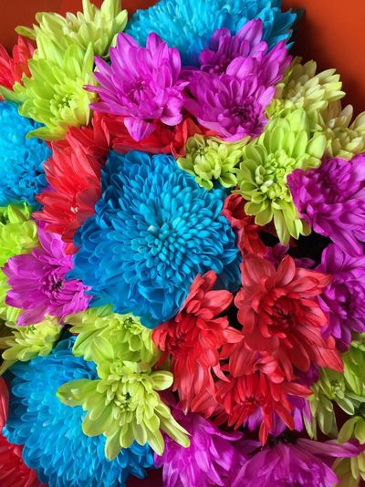 Bunch of flowers 💐💐💐 Flowers Flower Florist Colourful Brght Likearainbow Colours Bunchofflowers Gift Love