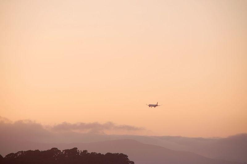 A plane come in
