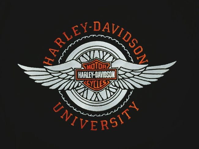 I have shop talk with Haley Davidson biker today . I like these it was behind staff shirt