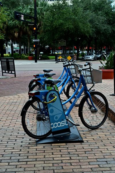 My City, Tampa, Florida on a cloudy Sunday Morning. Cloudy Morning Downtown Downtown District Florida Light And Shadow Little Sunshine Skycraper Tampa Tampa Bay Tampa Fl Bicycle Embrace Urban Life
