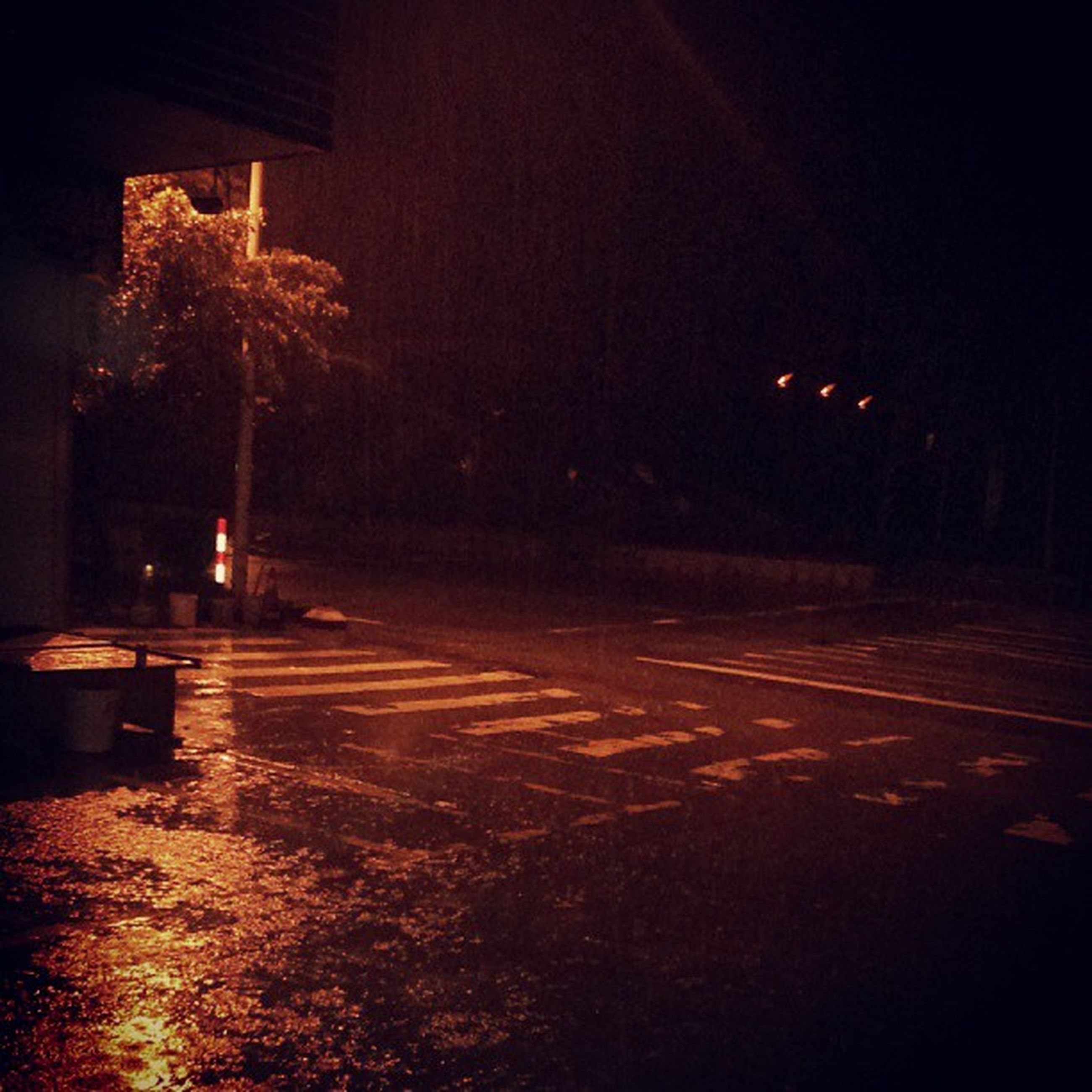 night, illuminated, street light, street, road, tree, lighting equipment, transportation, the way forward, dark, outdoors, building exterior, car, no people, light - natural phenomenon, silhouette, sky, light trail, city, road marking