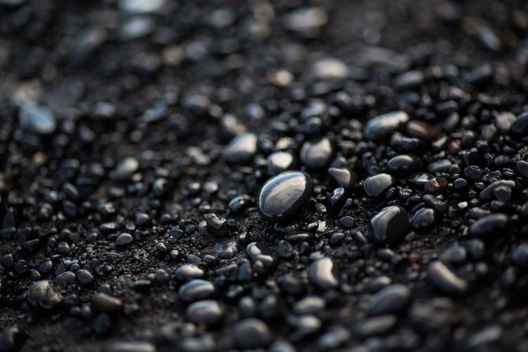Close-up of wet pebbles at beach