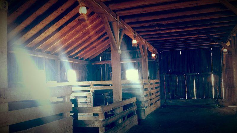 Barn Light Rays